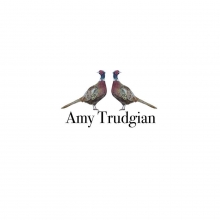 Amy Trudgian Art