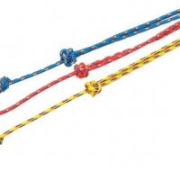 Bisley Multi-Coloured Lanyard
