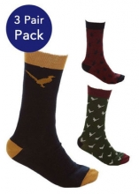 Sherwood Forest Burland Mens Pack of 3 Socks