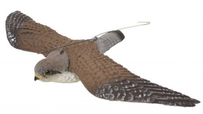 Sportplast Flying Kestrel