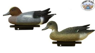 Widgeon Decoy